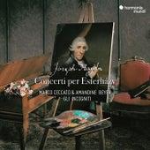 Haydn: Concerti per Esterházy by Various Artists