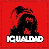 Igualdad 2013 von Igualdad
