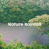Nature Rainfall by Various Artists