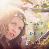 Take a Deep Breath Healty Music at First by Various Artists
