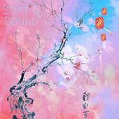 Soft & Sound von Harry G