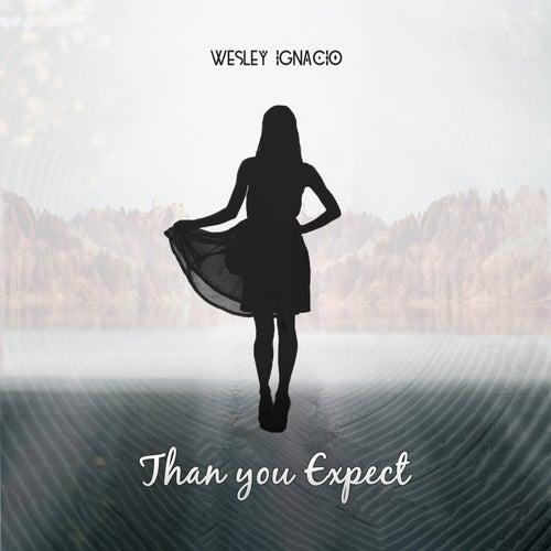 Than You Expect by Wesley Ignacio