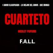 Amor Clasificado / Lo Mejor del Amor / Que Ironía (Medley) de The Fall