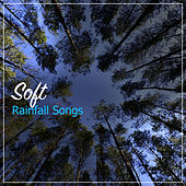 #15 Soft Rainfall Songs by Sounds of Rain