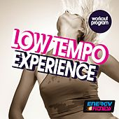 Low Tempo Experience Workout Program (15 Tracks Non-Stop Mixed Compilation for Fitness & Workout - 110 BPM) by Various Artists