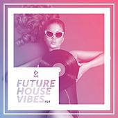 Future House Vibes, Vol. 14 by Various Artists