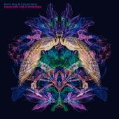 Paradise Sold Remixes de Steve Bug