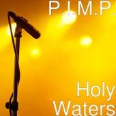 Holy Waters de Pimp