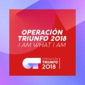 I Am What I Am (Operación Triunfo 2018) de Operación Triunfo 2018