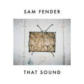 Sam Fender: