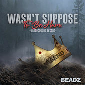 Wasn't Suppose to Be Here by Beadz