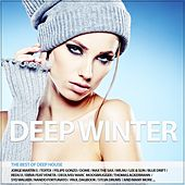 Deep Winter de Various Artists
