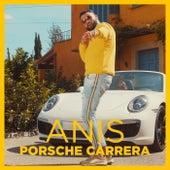 Porsche Carrera de Anis
