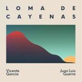 Loma de Cayenas van Vicente Garcia