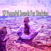 57 Peaceful Sounds For Studying von Entspannungsmusik