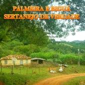 Sertanejo de Verdade de Palmeira e Biguá