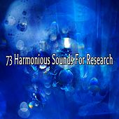 73 Harmonious Sounds For Research de Nature Sounds Artists