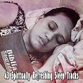 43 Spiritually Refreshing Sleep Tracks by Ocean Sounds Collection (1)