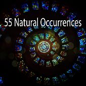 55 Natural Occurrences von Massage Therapy Music