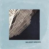 Wildest Dreams by Marc Scibilia