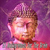 57 Backgrounds For The Brain by Music For Meditation