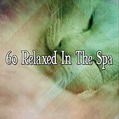 60 Relaxed In The Spa de White Noise Babies