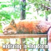 Meditating In The Storm de Thunderstorm Sleep