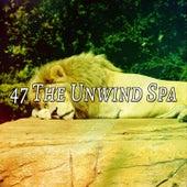 47 The Unwind Spa de Sleepicious
