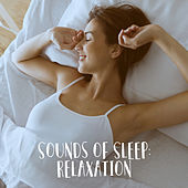 Sounds of Sleep: Relaxation by Various Artists