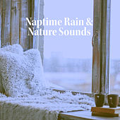 Soothing Rain for Thought de Various Artists
