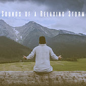 Sounds of a Relaxing Storm by Various Artists