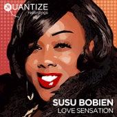 Love Sensation by SuSu Bobien