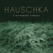 Dew and Spiderwebs by Hauschka