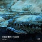 Flying, Pt. 2 (Remixes) by Anton Ishutin