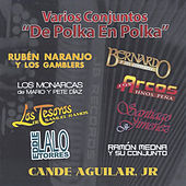 De Polka en Polka de Various Artists