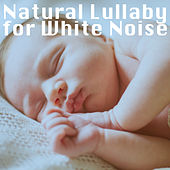 Natural Lullaby for White Noise de Various Artists