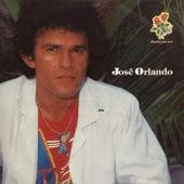 Parabéns pra Você by Jose Orlando