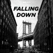 Falling Down de Various