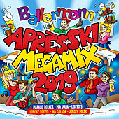 Ballermann Apres Ski Megamix 2019 von Various Artists