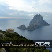 Se Verda Forever by Anthony B
