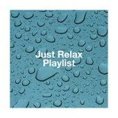 Just Relax Playlist de Various Artists