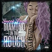 Diamond in the Rough von Jucee Froot