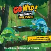 Folge 27: Lemurenjagd mit Chamäleon-Power / Die Vögel der Prärie (Das Original-Hörspiel zur TV-Serie) von Go Wild! - Mission Wildnis