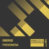 Phenomena by Emerge