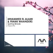 Spring Break by Mhammed El Alami