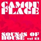 Camouflage Sounds of House, Vol.13 de Various Artists