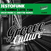 I'm Gonna Love You (Micky More & Andy Tee Remix) von Jestofunk