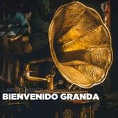 Latin Classics de Bienvenido Granda