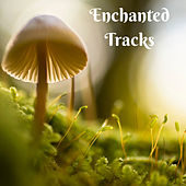 Enchanted Tracks by Nature Sounds (1)