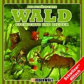 Die schönschte Wald Gschichte und Lieder von Various Artists